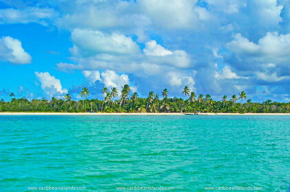 Andros > Bahamas > Îles Caraïbes >> ANDROS