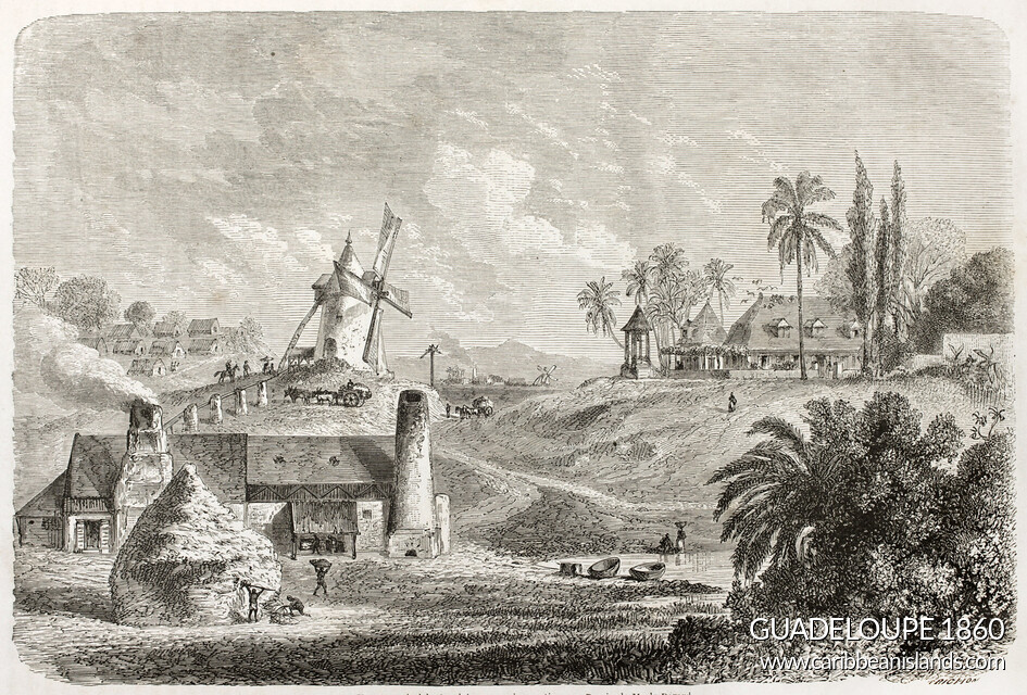 Guadeloupe old illustration