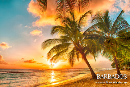 Barbados > Caribbean Islands >> BARBADOS