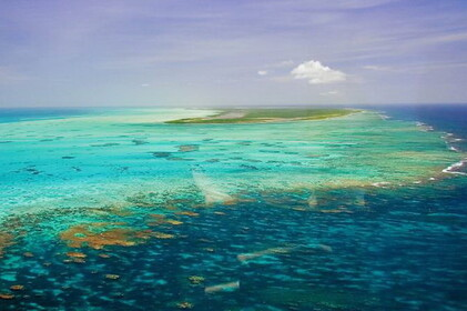 ANEGADA - British Virgin Islands :. caribbeanislands.com