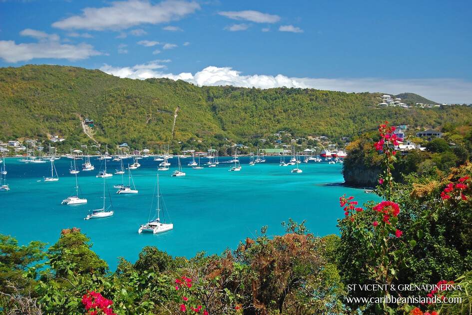 Saint Vincent & Grenadinerna, Caribbean